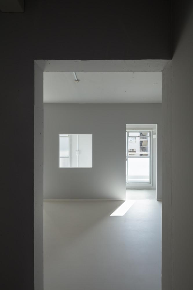renovation7